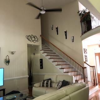56 inch Solana Breeze Brushed Nickel LED Ceiling Fan/Black Blades