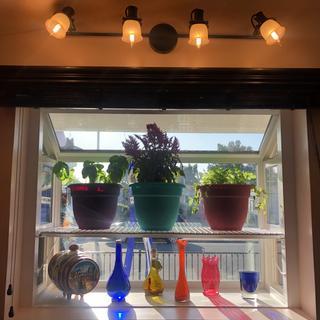 Beautiful fixture above garden window