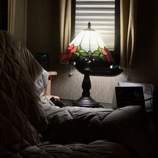 """Small. 17 1/2 """" Robert Louis  High Dysnn FlowerTiffany Lamp"""