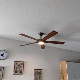 New fan with light on