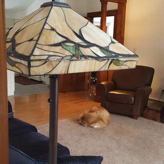 Beautiful lamp - we really like it!