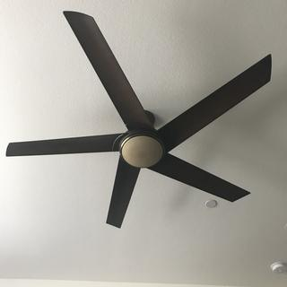 Best fan ever