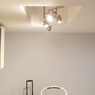 Kitchen remodel in process. This light is perfect!