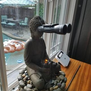 My son thought Buddha should have binoculars.