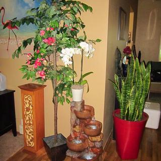 My indoor, winter garden :-)