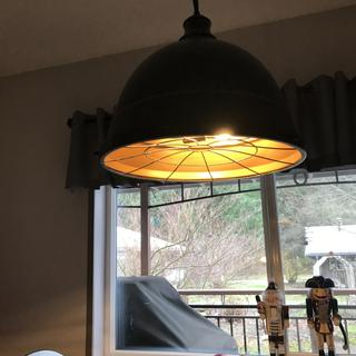 I picked 2700k warm light clear bulbs that dim