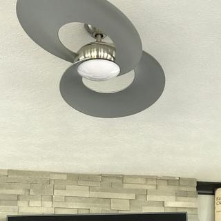 Brushed Nickel LED fan