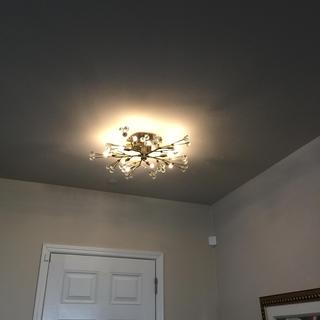 I love this Possini Euro Crystal Ceiling Light.   I highly recommend this light.