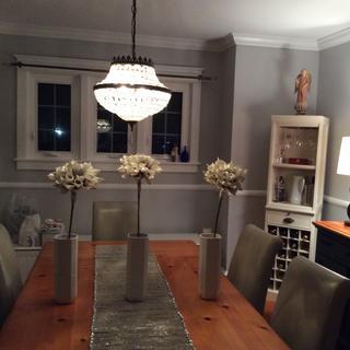 Daring dining room update!