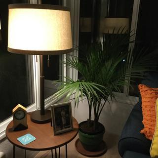 Lamp in Sunroom at night