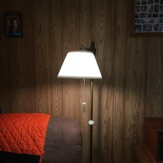 Great lamp shade.