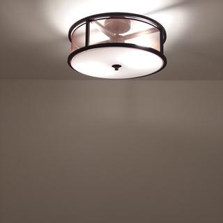 Great new light