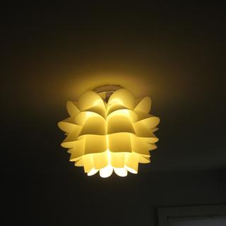 Bedroom light ~ soft and so pretty. Changes the whole room.