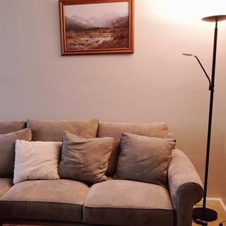 Lamp next to couch with top lamp on.