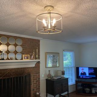 The four bulbs purchased from Lamps Plus make the lighting very bright.