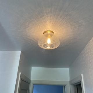 Hallway light, great for hallway and light that was included was great....
