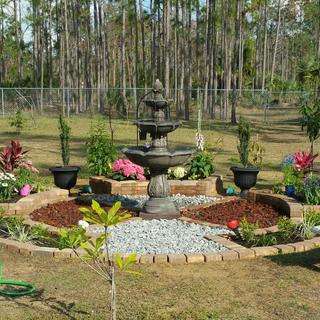 Small Garden in Golden Gate Estates, Naples, Florida.
