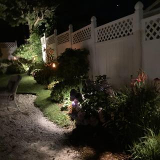 Lighting the garden