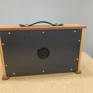 The back is painted birch plywood attached with brass screws.