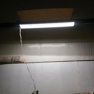 Temp testing how high and still maintain dececent light on bench