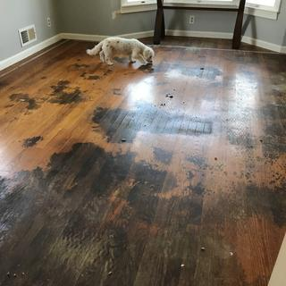 After removing carpet...nasty! Wasn't my little dog here that was the culprit.