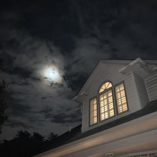 View from outside on a moonlit night...