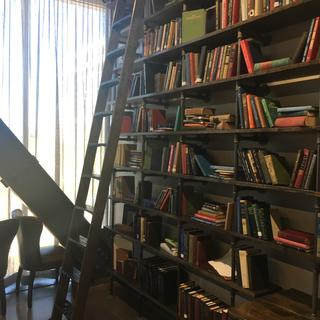 Library ladder with pipe shelving.