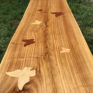 Used the Freud router bit to inlay these butterflies into a couple of benches for my Daughter.