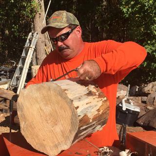 Shaving on my log stump seats