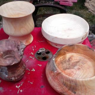 These are all from  Driftwood roots.  wood types unknown.
