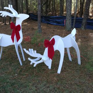 Holiday reindeers in our yard.