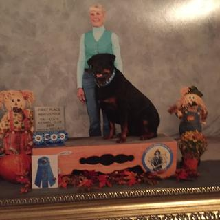 Shiloh at the AKC winning first place and getting his Utility Title