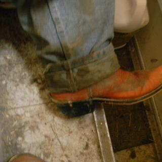 This step & the one below is my only Mud Room! The Best place for all this Muck to dry & fall off.