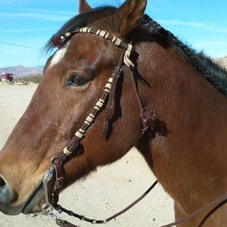 Vaquero Headstall, matching reins, bit & curb chain