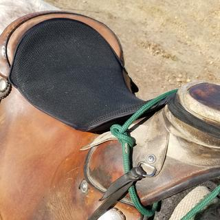 16 inch saddle with Roper's horn.