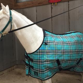 I am thrilled with Frosty's new fly sheet,  The  fit is perfect and looks durable!
