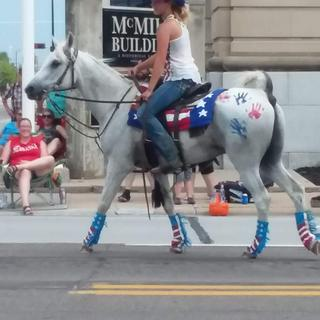 L'Omar all gussied up for the Independence Day parade in Nebraska!