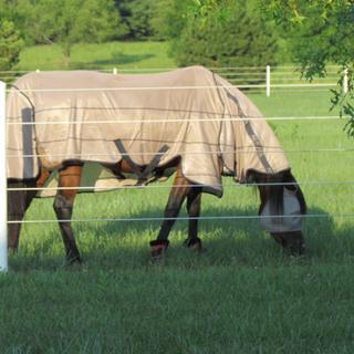 Size 72 on a 15.1 Arabian mare.