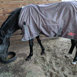 weather proof lite sheet blanket