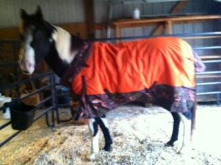 Mickey in his Tough-1 1200D Snuggit blanket