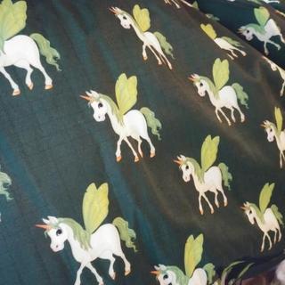 Hunter blanket, with the fairy unicorns