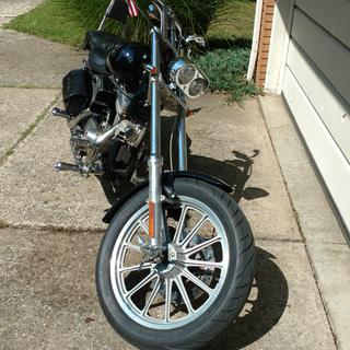 My scoot with cobras on front and rear