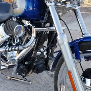 Side view on a 2009 Softail Custom FXSTC