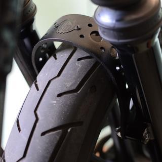 Mounted on a Harley-Davidson XL883N Iron