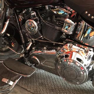 I wound up adding the Harley-Davidson Motor Co. Trim. Compliments the bike well.