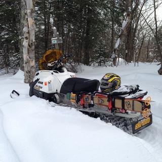 Ski-Dooin'