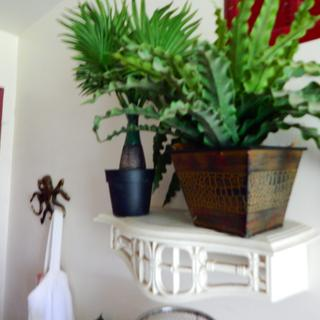 The little palm fits right in with my tropical look in the bathroom
