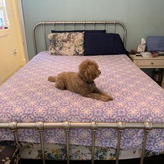 Like the bedframe