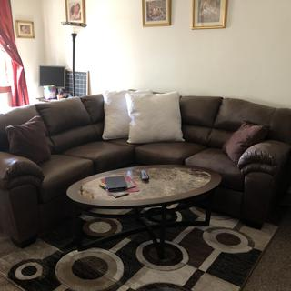 New sectional with Guinette rug and pillows
