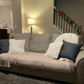 Sofa-I cover cushions because of toddler and dog but durable and doesn't show staining easily.